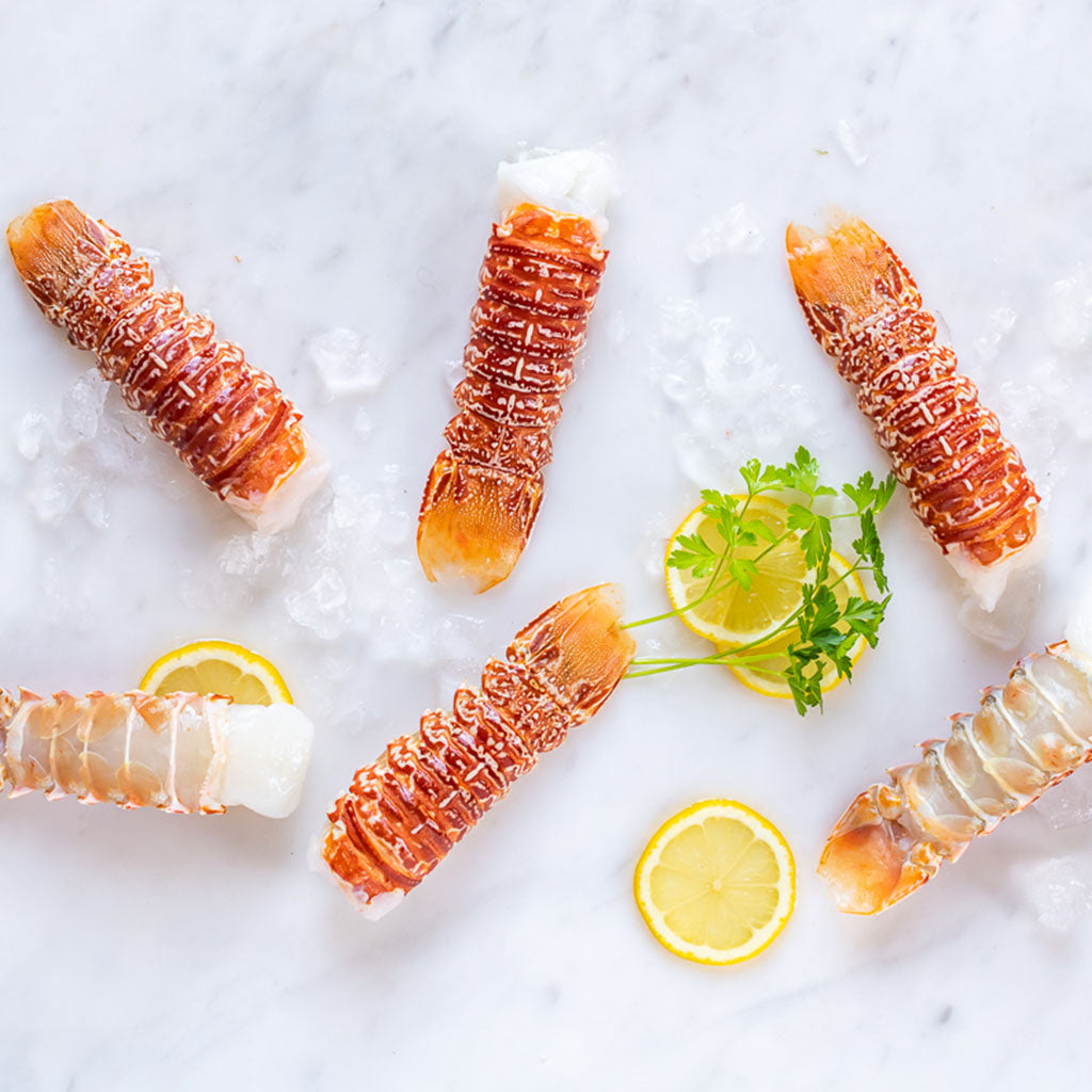 6 Frozen Rock Lobster Tails (South Coast)