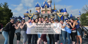 Disneyland Retreat $4000 VIP Package