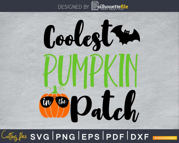 Coolest Pumpkin in the Patch Halloween cricut svg craft cut