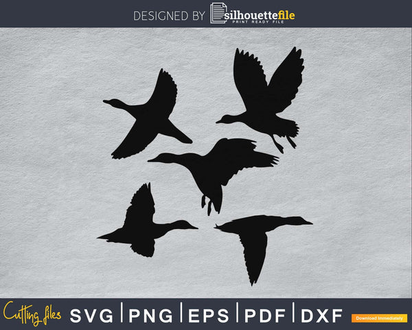 Flying Duck silhouette Vector at Get Drawings svg files