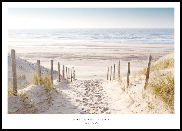 North Sea Dunes Sandstrand Poster