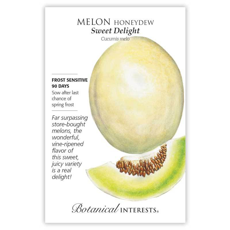 Melon Honeydew 'Sweet Delight' Seeds