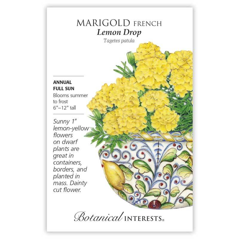 Marigold French 'Lemon Drop' Seeds