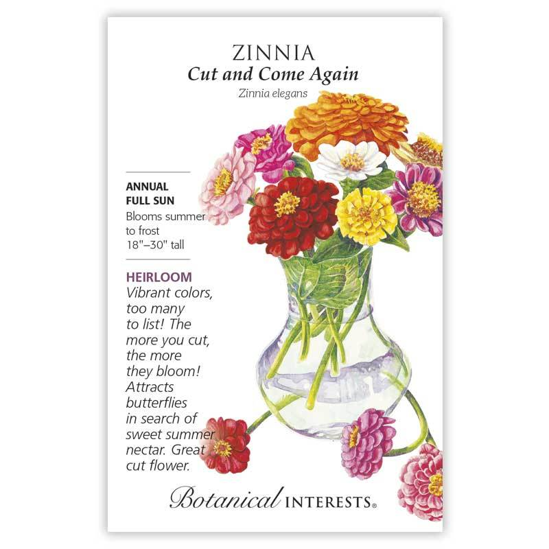 Zinnia 'Cut and Come Again' Seeds