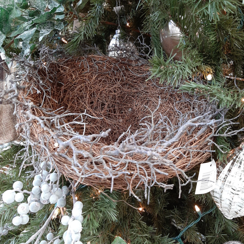 Large Bird Nest
