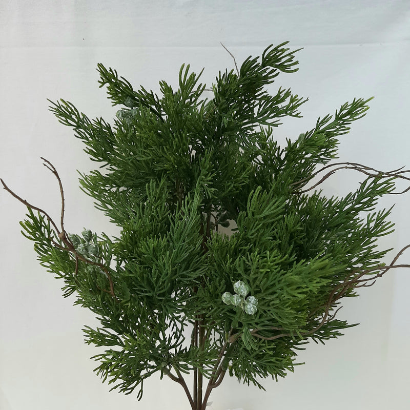 Cypress with Twigs Spray