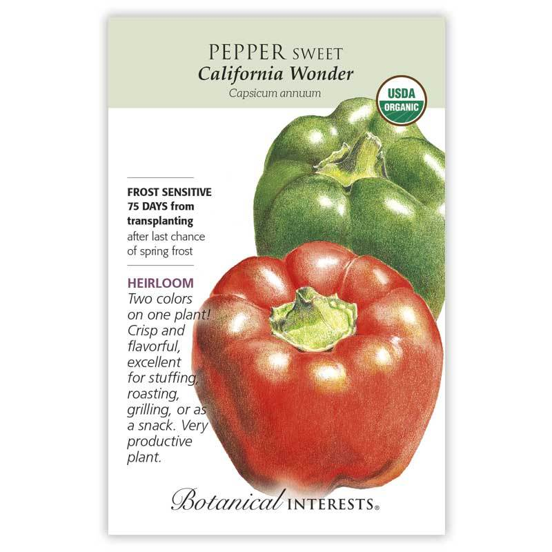 Pepper Sweet 'California Wonder' Organic