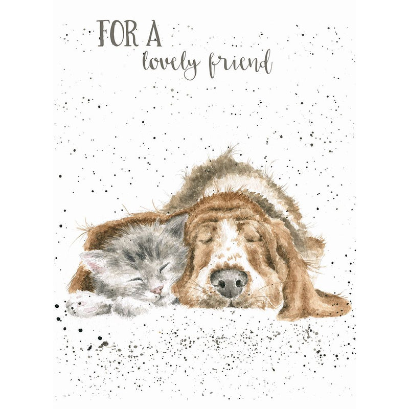 'Dog-and-catnap' Birthday card