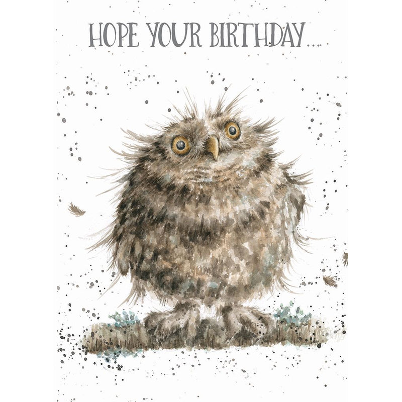 'You're a Hoot' Birthday card