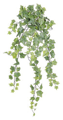 Mini Trailing Ivy Silk Bush