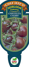 Tomato - Chef Jeff 'Chocolate Cherry' Heirloom