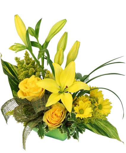 'Playful Yellow' Flower Arrangement