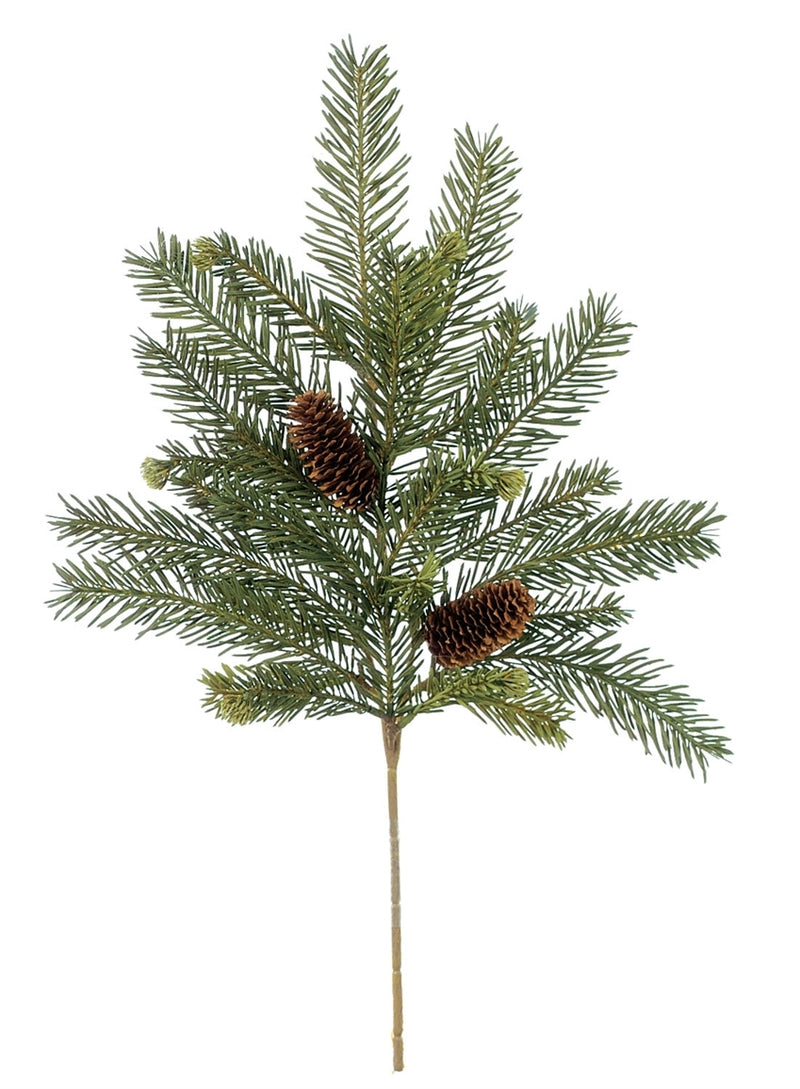 Alpine Fir with Cones Pick