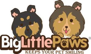 Big Little Paws Singapore- Healthy Dog Treats | Natural Dog Chews