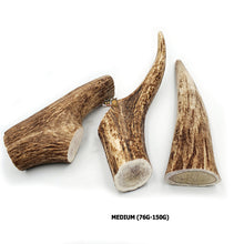 Load image into Gallery viewer, Red Deer Antler Dog Chew