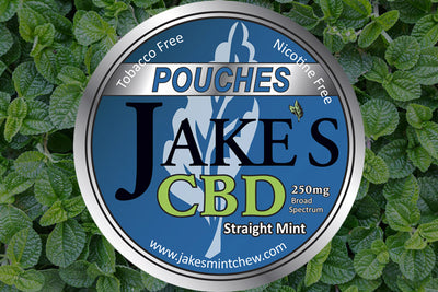 Tin of CBD Pouches - Straight Mint