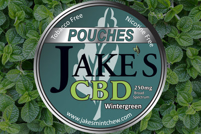 Tin of CBD Pouches - Wintergreen
