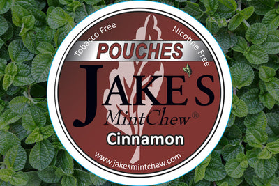 Cinnamon Flavor Mint Pouches