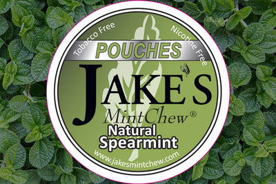 Spearmint Flavor Pouches