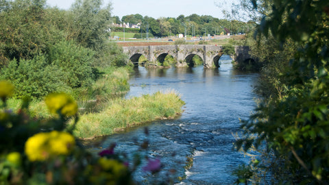 Discover the Flavours of the Boyne Valley- Trim and Navan Itinerary