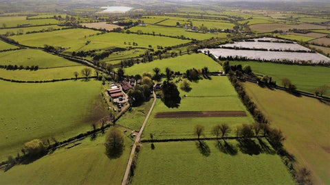 Shalvanstown Organic Farm in the Boyne Valley has 20 years experience in Biodynamic farming of beef, lamb and malting barley for distilleries.