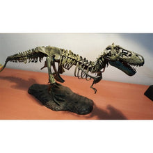 Load image into Gallery viewer, 【Global Limited Edition】16:1 True Restore Tyrannosaurus Model