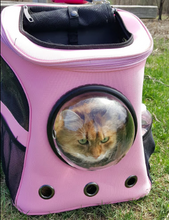 "Load image into Gallery viewer, ""The Fat Cat"" Cat Backpack - For Larger Cats"