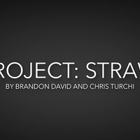 Project Straw by Brandon David & Chris Turchi video DOWNLOAD