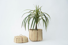 Load image into Gallery viewer, BIDAYUH LIDDED STORAGE BASKET | NATURAL - NEEPA HUT