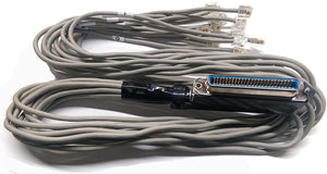 Amphenol Telco (Female) Cable to 12 RJ11, 3ft