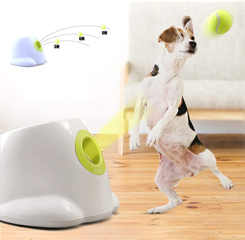 CATAPULT MAGIC™ | Tennis Ball Dog Launcher | Electric and automatic food dispenser - FANTASY BIG STORE