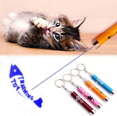 Laser Cat™ Funny Pet LED Laser Toy | With Bright Animation Mouse Shadow - FANTASY BIG STORE