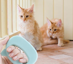 Massage brush to gently remove your cat's hair - FANTASY BIG STORE