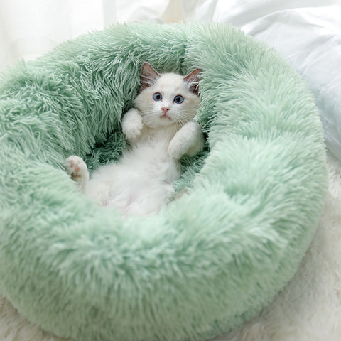 Very comfortable bed for dogs and cats. Your pets will love it!