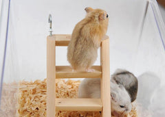 Small wooden ladder worked for hamster climbing - FANTASY BIG STORE
