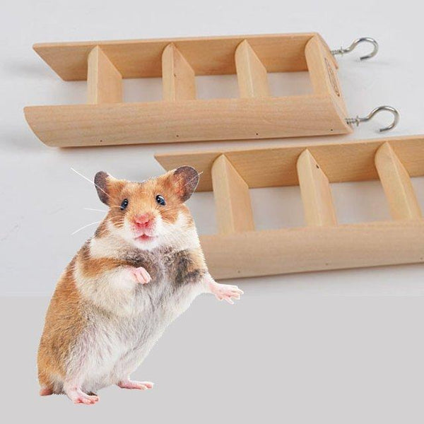 Small wooden ladder worked for hamster climbing