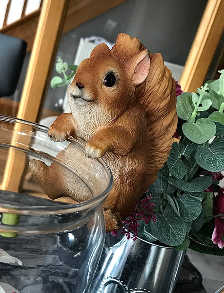 Squirrel pot pal