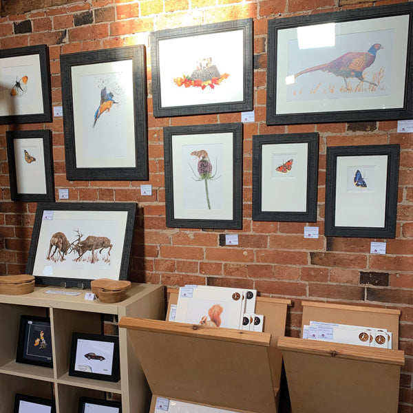 Framed pictures at Ferrers Gallery