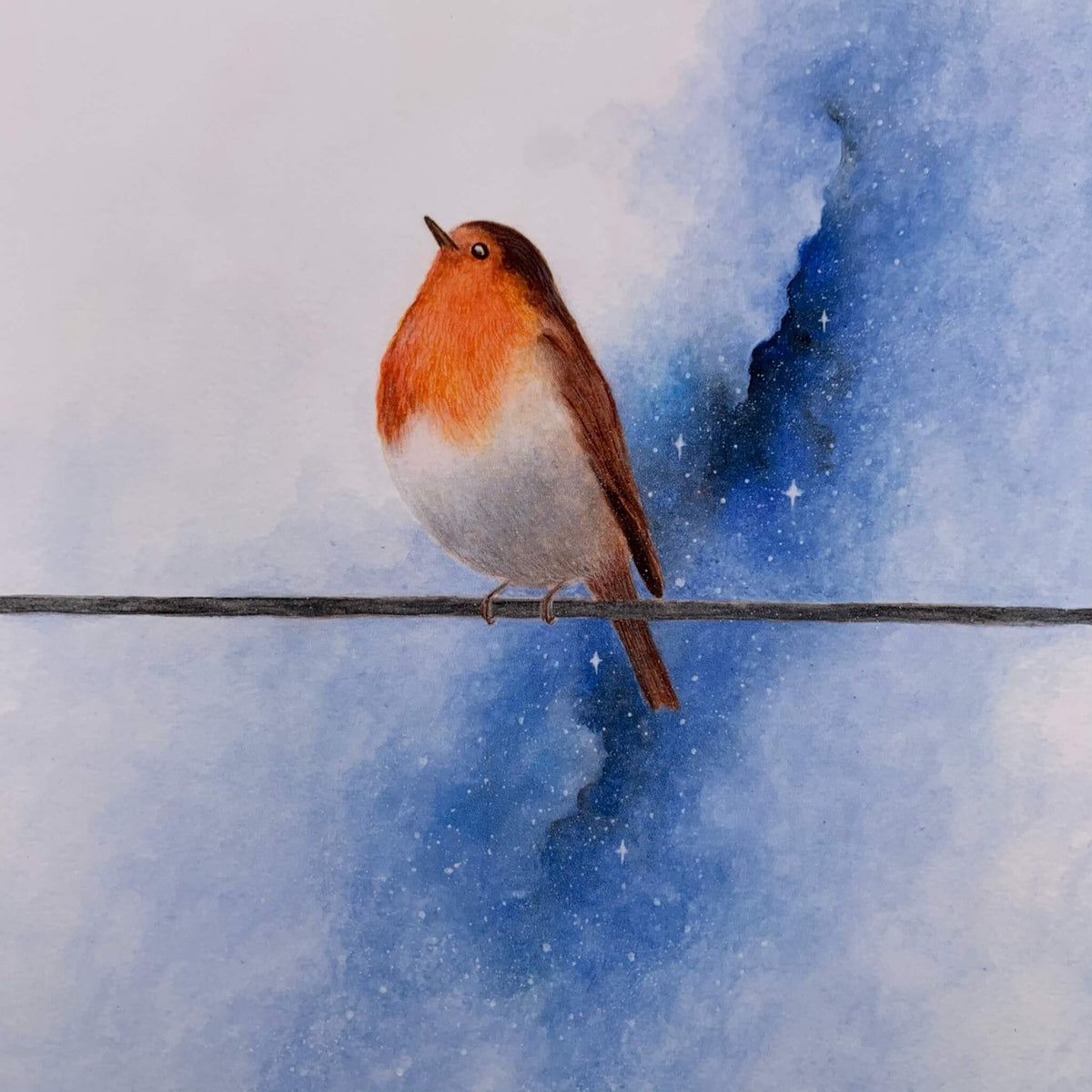 'Early Morning' Robin Print