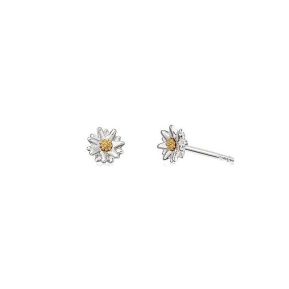 Daisy Bellis Daisy Stud Earrings - Maudes The Jewellers