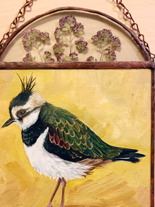 Northern Lapwing and pressed oregano flower and fern in glass