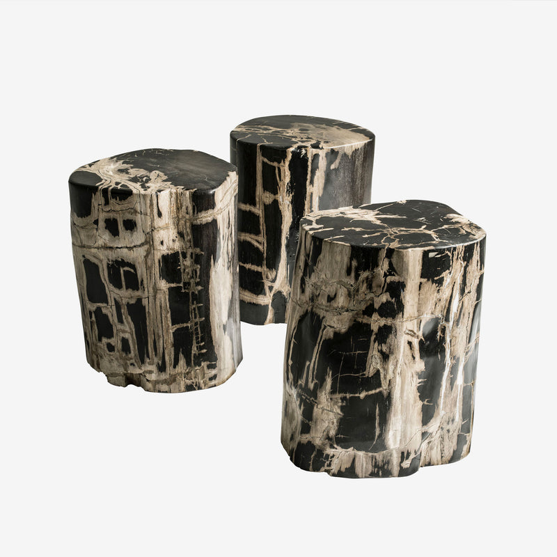 Petrified Wood Stool, Andrew Martin, Contemporary Design