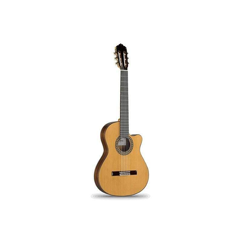 Professional Guitar - Acoustic Body (L)