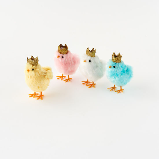 Fluffy Chick with Crown