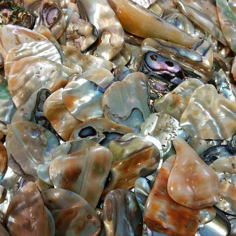 Abalone for beauty, sensitivity, harmony