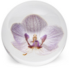 Orchid Paperweight