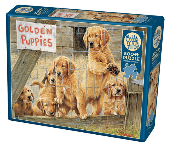 PZ 500 CH GOLDEN PUPPIES