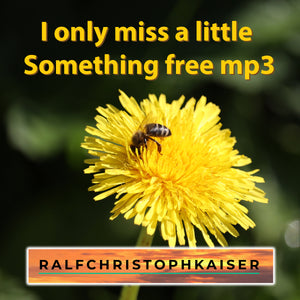"""I only miss a little something"" der neue alternative Rock Song by Ralf Christoph Kaiser und Band jetzt hier bei TheBedtimestory.online als free mp3 Download"