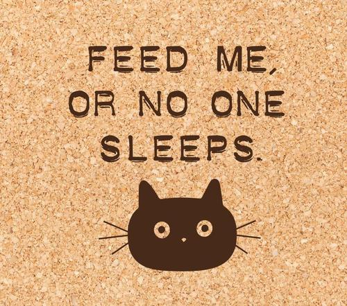 Feed Me or No One Sleeps Cat Coaster
