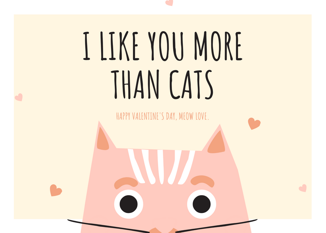 LIKE YOU MORE THAN CATS valentine